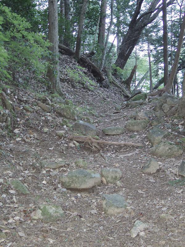 長江神社への道
