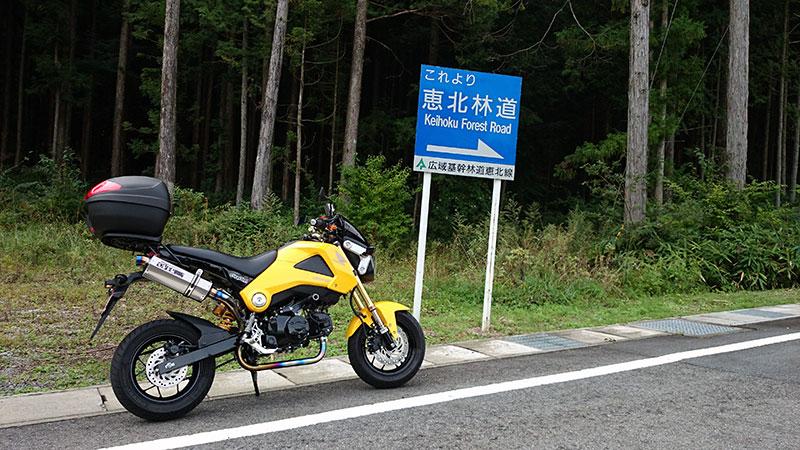 恵北林道(北側)
